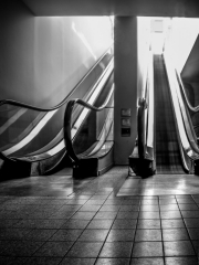 Up into the light:  escalator in the Galleria