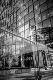 web-downtown-7