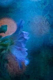 web-floral-5