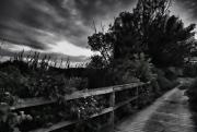 Path at Corning Lake, Holden, just at sunset