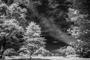web-infrared-3