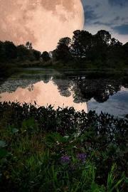 Oversized moon, Tinkers Creek
